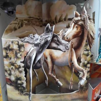 carte chevaux