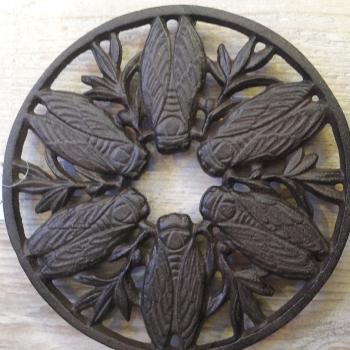 cicada trivet